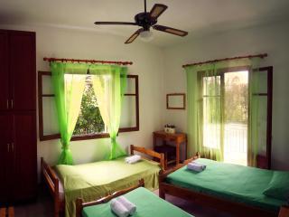 Paraskevi Apartments - Ipsos vacation rentals