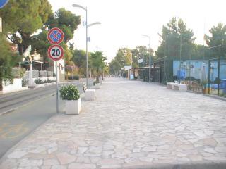 Casa Campagna Parco Pollino -Cerchiara di Calabria - Cerchiara di Calabria vacation rentals