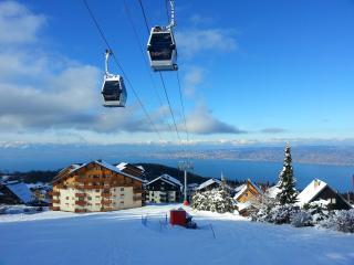 Penthouse Ski & Summer rental - Thollon-les-Memises vacation rentals