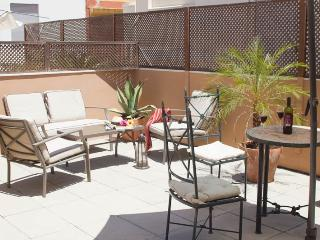 Duplex ap. free wifi and terrace Giralda´s view - Province of Seville vacation rentals