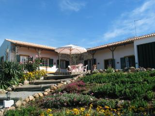 Nice Cottage with Dishwasher and A/C - Montemor-o-Novo vacation rentals