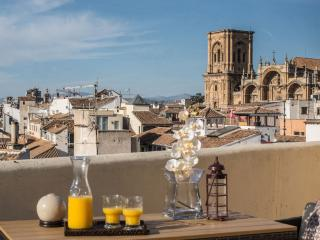 EXCLUSIVE PENTHOUSE GRANADA - Granada vacation rentals