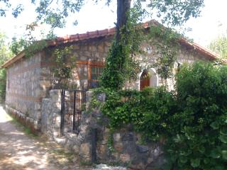 Fig Garden Cottages / Quince Cottage - Fethiye vacation rentals