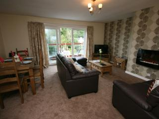 Perfect House with Washing Machine and Private Fishing - Newton Stewart vacation rentals