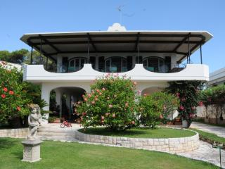 VILLA DELA - San Cataldo vacation rentals