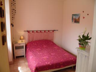 appartement meublé 24m² pour 2 adultes - Murol vacation rentals