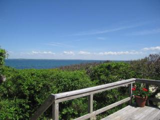 Beach Cottage Nestled in the Dunes 116610 - Vineyard Haven vacation rentals