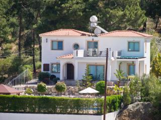 Beautiful Villa with Internet Access and A/C - Limni vacation rentals