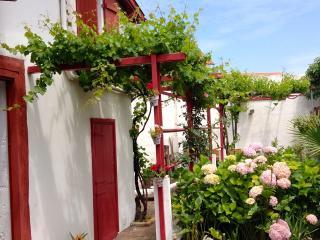 Jolie Maison Basque de ville au Centre de Biarritz - Allas-les-Mines vacation rentals