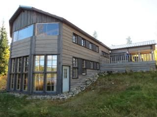 Rural retreat & Bear Watching - Siilinjärvi vacation rentals