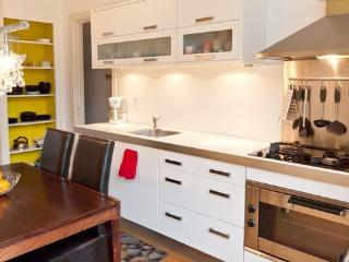 Deluxe bright duplex in Vondelpark area - Amsterdam vacation rentals