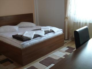 18 bedroom Lodge with Internet Access in Vama - Vama vacation rentals