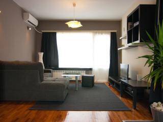 Spacious, central, sunny flat - Sofia vacation rentals