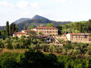 2 bedroom Farmhouse Barn with Internet Access in Camaiore - Camaiore vacation rentals