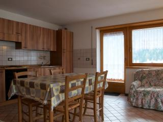 Tre Cime House, bright and panoramic - Auronzo di Cadore vacation rentals