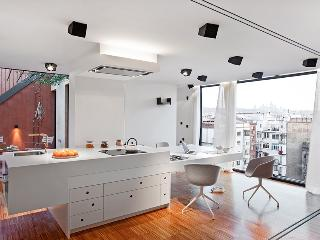 Triple Terrace 2 Bed Apartment - Barcelona vacation rentals