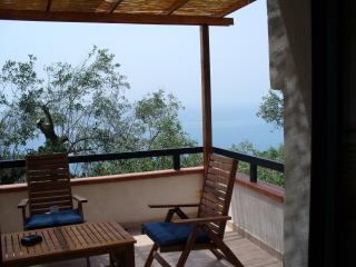 VILLA CECILIA/apartment 4 - Pisciotta vacation rentals