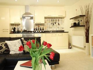 Sutton View clean, modern central and free parking - Plymouth vacation rentals