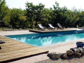 Designer house with 6 bedrooms, garden and pool - Banon vacation rentals
