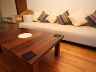 Modern 2 BR apartment for rent in Colombo Center - Colombo vacation rentals