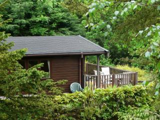 Mockerkin Tarn Luxury Log Cabin - Skelwith Bridge vacation rentals