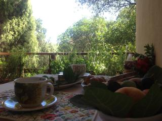 Bright 3 bedroom Capoterra Villa with Internet Access - Capoterra vacation rentals