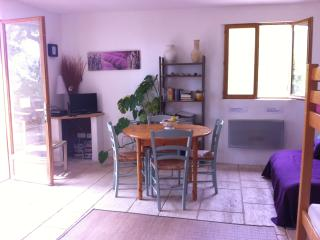 Nice 1 bedroom Gite in Greolieres - Greolieres vacation rentals