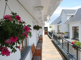 Bright Condo with Internet Access and Central Heating - Galway vacation rentals