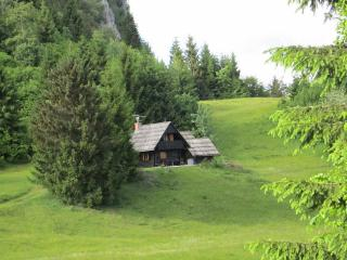 Chalet on Pokljuka, Triglav NP, Robinson location - Bohinjska Bela vacation rentals