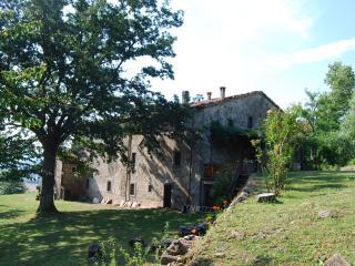 Antico casolare in Alto Mugello (Passo Futa) - Firenzuola vacation rentals