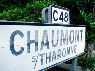 Cozy 2 bedroom Chaumont-sur-Tharonne Gite with Internet Access - Chaumont-sur-Tharonne vacation rentals