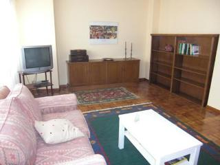 Nice Condo with DVD Player and Microwave - Navarra vacation rentals