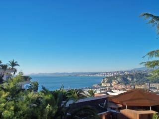 Apt in Nice -view of Med, balcony, garden, parking - Nice vacation rentals