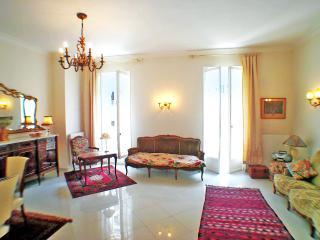 Elegant 2 bedrm apt in central Nice, sleeps 2 to 6 - Nice vacation rentals