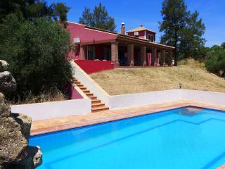 Nice Villa with Private Outdoor Pool and Grill - Alcolea del Rio vacation rentals