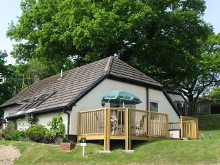 Perfect Cottage in Highampton with Internet Access, sleeps 5 - Highampton vacation rentals