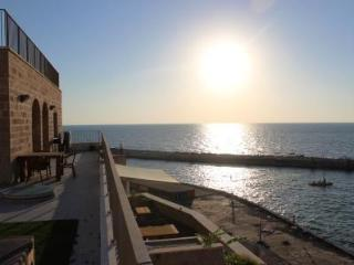 Amazing Penthouse in Old Jaffa - Jaffa vacation rentals