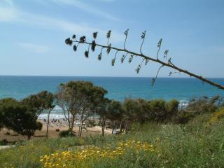 il Canneto Il Veliero - Marinella di Selinunte vacation rentals