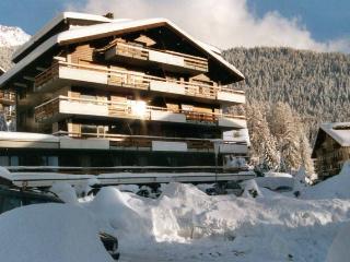 CIMEBLANCHE 7 - Verbier vacation rentals