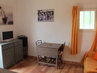Gite aux saintes maries de la mer - Arles vacation rentals