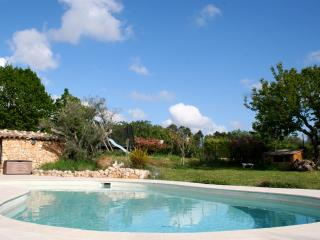 spacious villa with pool - Callian vacation rentals