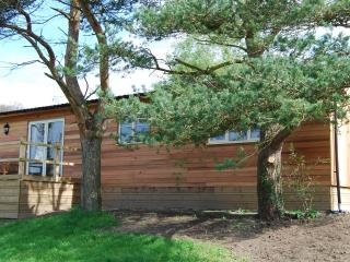 2 bedroom Cabin with Internet Access in Dursley - Dursley vacation rentals