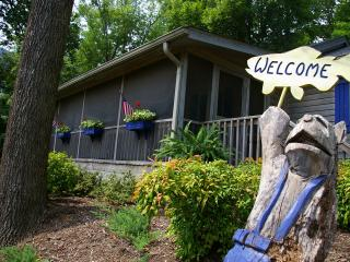 Sundance Cottage -  Immaculate - Pet Friendly Too! - Lake Lure vacation rentals