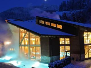 Thermes Parc Studio - Champéry vacation rentals