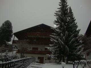 ORTISEI - VAL GARDENA - Ortisei (BZ) - Val Gardena vacation rentals