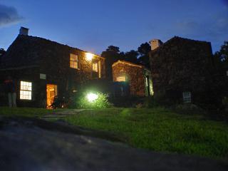 Casa dos Rodeiros - Pico vacation rentals