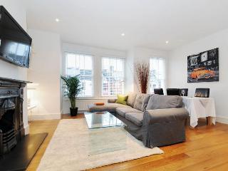 Luxury 3 Double bedroom flat Davis - London vacation rentals