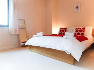 Spacious 2Bed & 2Bath Flat near City Centre - London vacation rentals