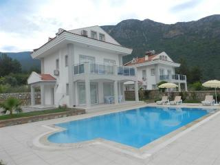 New Age Villa Hill View to Oludeniz NearHisaronu-1 - Oludeniz vacation rentals
