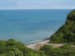 Gold SeaScape - Aberaeron vacation rentals